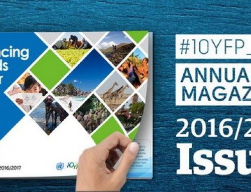10YFP STP Annual Magazine 2016/2017