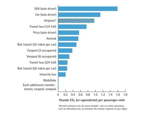World Economic Forum: 6 ways travelling professionals can cut their carbon footprint