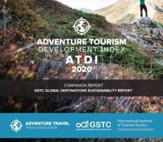 Cover Page of the ATDI Report 2020 Edition